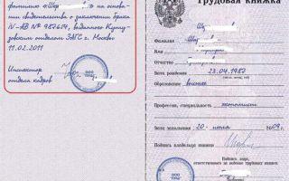 Изменение фамилии в трудовой книжке — после замужества, образец оформления, пример записи