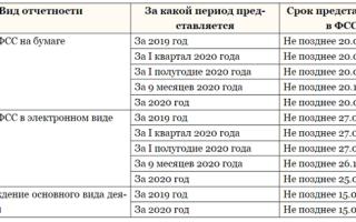 Отчетность фсс 2020