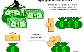 Пропорциональная налоговая система