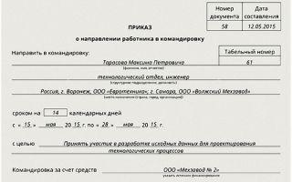 Образец приказа о сокращении численности и штата работников организации в 2019 году