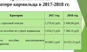 Пенсия по потере кормильца — размер пособия в 2019-2019 году, ребенку после 18 лет, назначение, кому положена,
