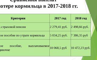 Судебные приставы новосибирск неплательщики алиментов