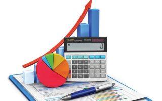 Ведение бухгалтерского учета источников формирования имущества — отчет 2020