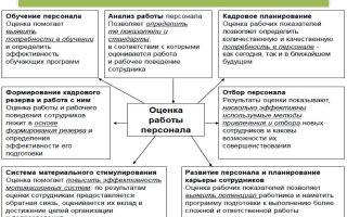 Система оценки персонала в организации — оценка эффективности, построение, рекомендации по развитию