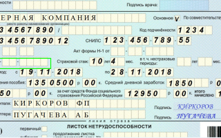 Заполнение больничного листа (листка нетрудоспособности) — образец 2019, правила, пример