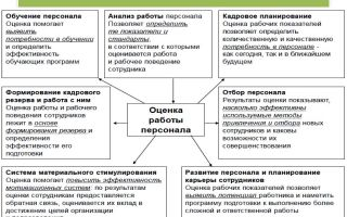 Оценка квалификации персонала — пример, методы