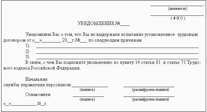 Временный трудовой договор на испытательный срок образец — Юридическое лицо