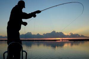 Запрет на рыбалку в 2020 году — сроки и штрафы