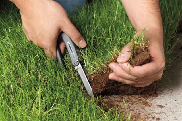 Право постоянного бессрочного пользования земельным участком в 2020 году
