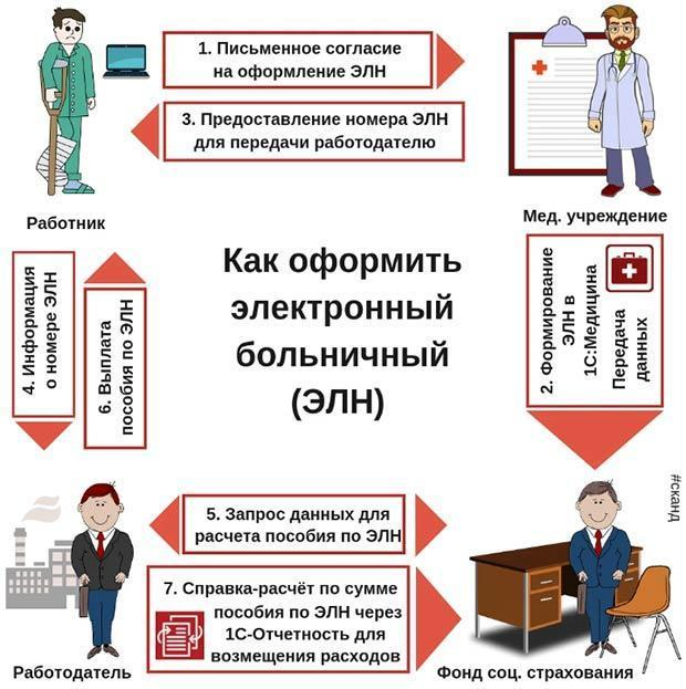 Срок хранения больничных листов в организации в 2020 году